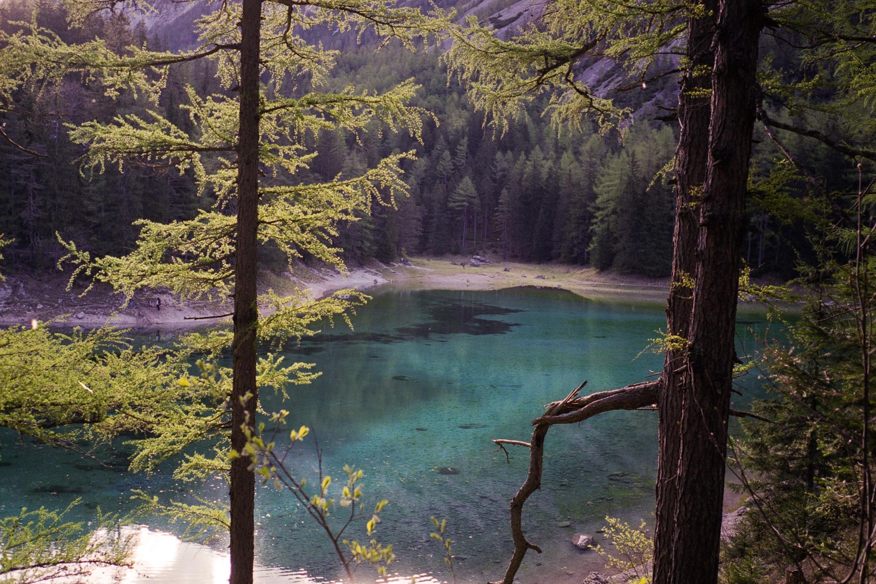 Grüner See, Leica M2, Voigtlander Color-Skopar 35mm f/2.5, Fujicolor Pro 160NS, Epson Perfection V700